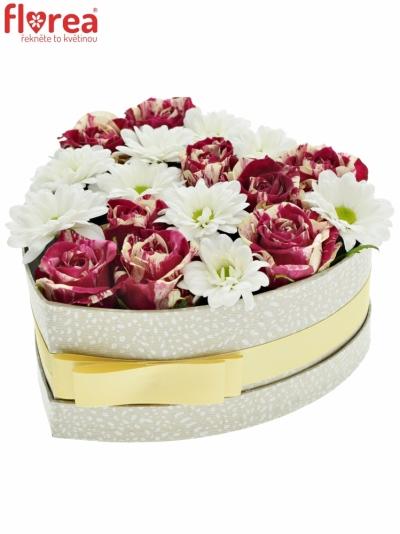 Krabička květin TERRIEN šampaň 19x9cm