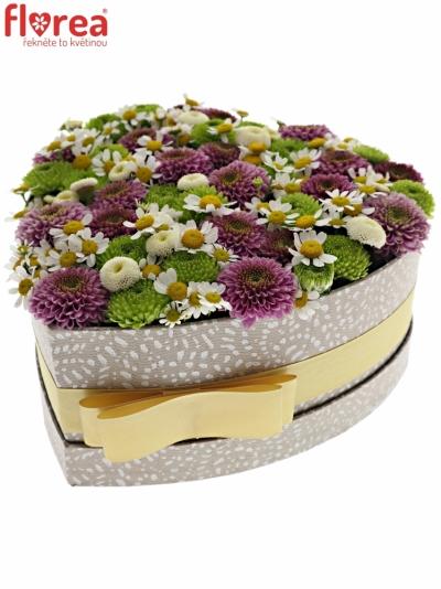 Krabička květin ZOSIMA šampaň 19x9cm