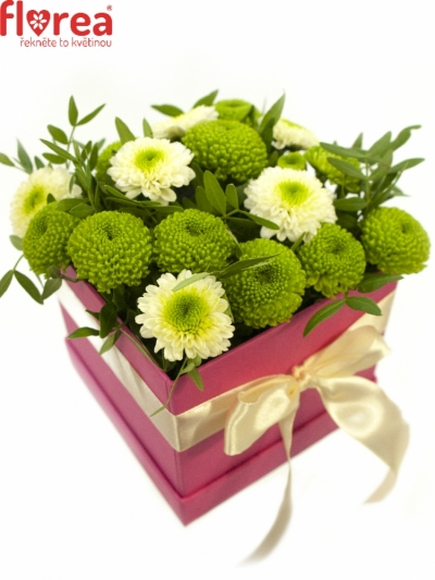 Krabička květin růžová LITSA 12x12x11cm