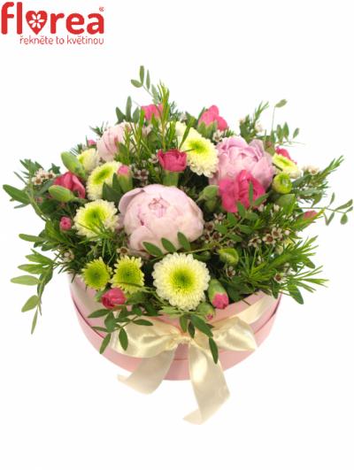 Krabička květin růžová LYCAON Ø20v10cm