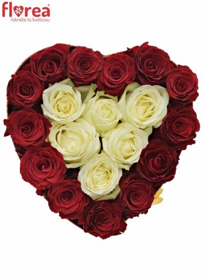 Krabička růří HEARTDOOS červená 24x10cm