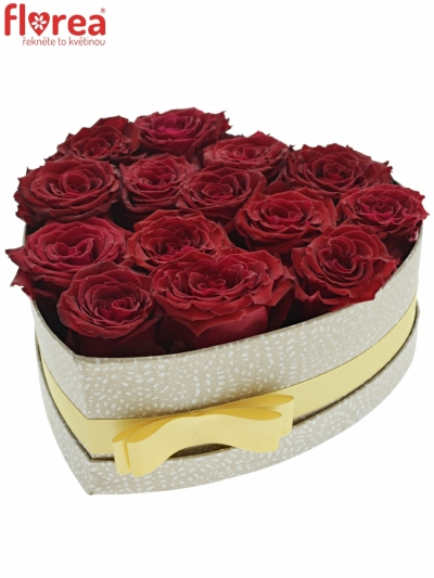 Krabička růží ABBA šampaň 24x10cm