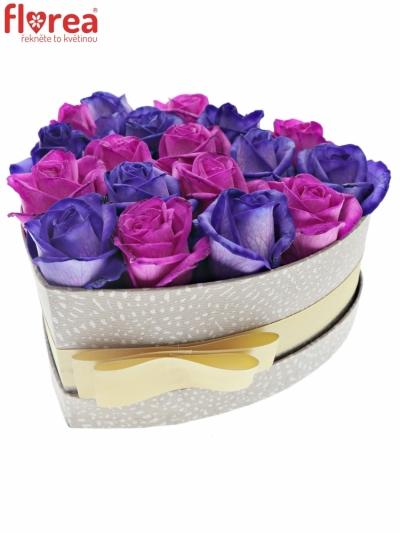 Krabička růží AGAPE šampaň 19x9cm