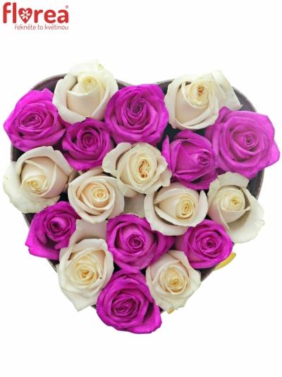 Krabička růží ALIKI šampaň 19x9cm