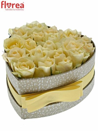 Krabička růží ANGELA šampaň 15x8cm