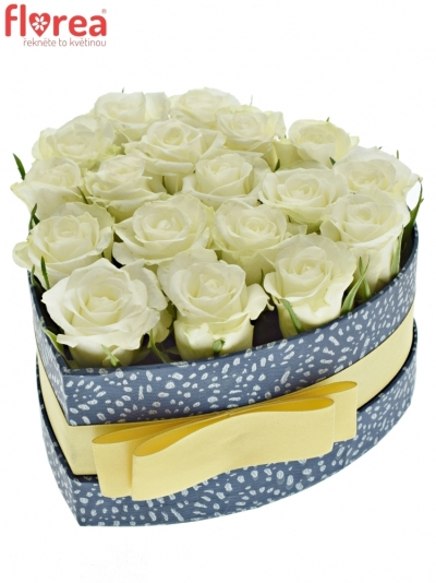 Krabička bílých růží ASPEN! modrá 15x8cm