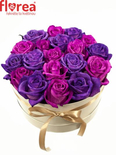Krabička růží bílá AGAPE Ø20v10cm