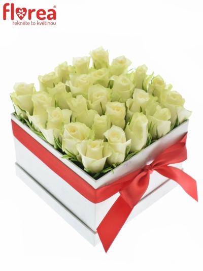 Krabička růží bílá DAFNE 16x11cm