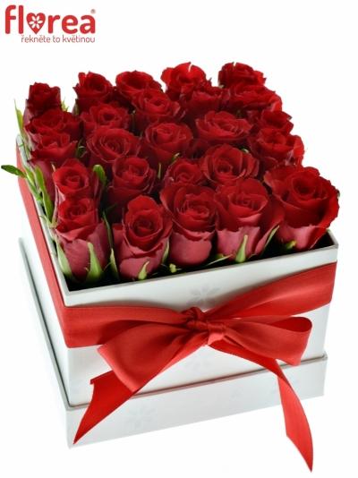 Krabička růží bílá DORIA 12x12x11cm