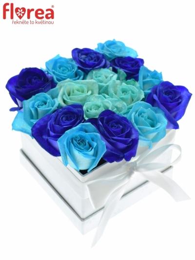 Krabička růží bílá ETEOCLES 16x11cm
