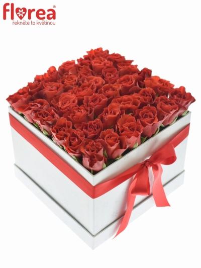 Krabička růží bílá EUDOSIA 20x15cm
