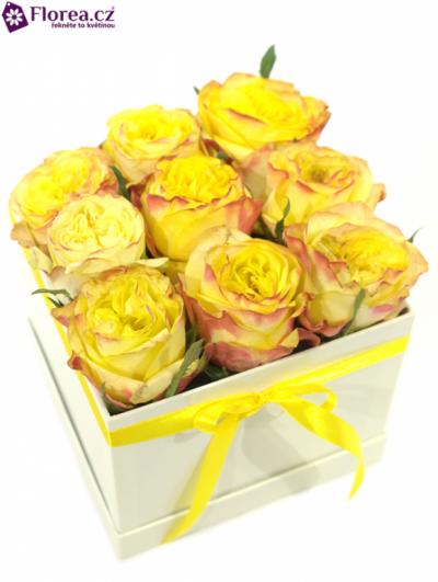 Krabička růží bílá EUROPA 12x12x11cm