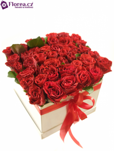 Krabička růží bílá ISIDORE 16x16x13cm
