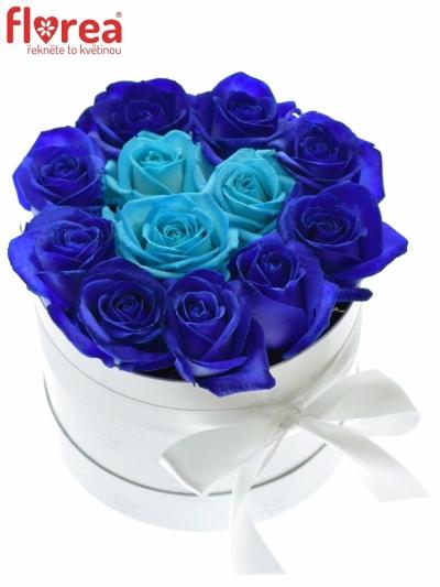 Krabička růží bílá ABIELA 16x11cm