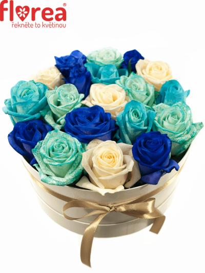 Krabička růží bílá TENY Ø20v10cm