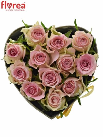 Krabička růží BISOU šampaň 15x8cm