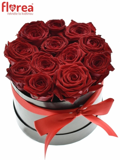 Krabička růží CHANTAL black 16x11cm