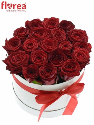 Krabička růží CHANTAL white 20x15cm