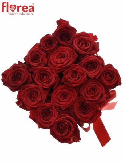 Krabička růží CHANTELLE black 16x11cm
