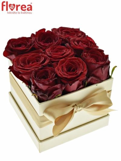 Krabička růží CHANTELLE champagne 12x9cm