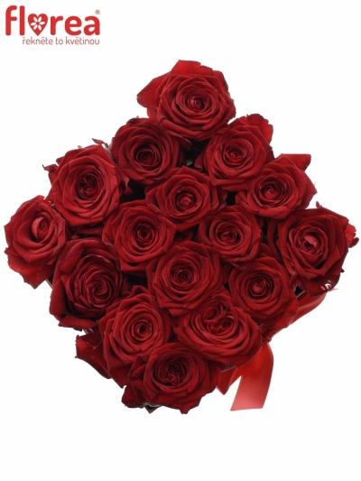 Krabička růží CHANTELLE red16x11cm
