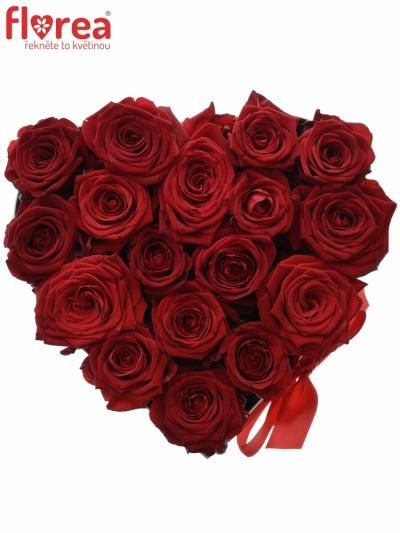 Krabička růží CHANTELLE white 20x11cm
