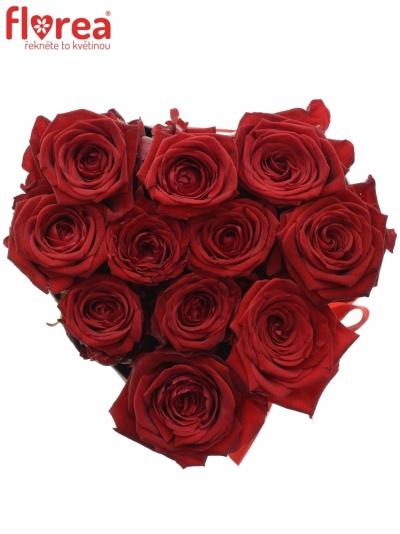 Krabička růží CHANTELLE white16x9cm