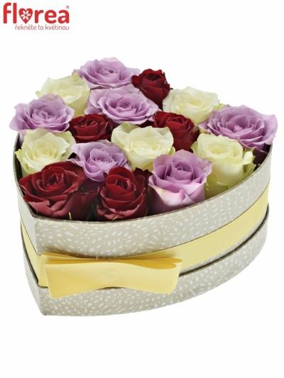 Krabička růží FEELISHA šampaň 19x9cm