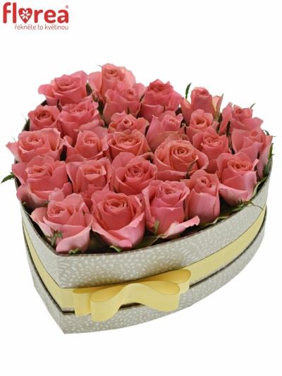 Krabička růží FEIWEL šampaň 24x10cm