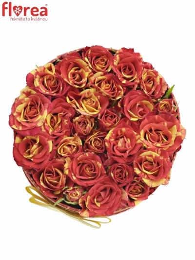 Krabička růží FIRE FLASH červená 13,5x8cm