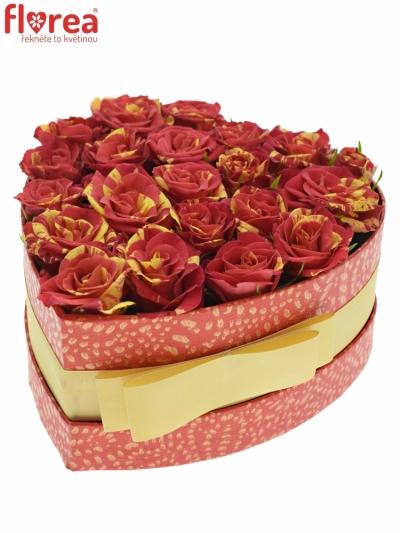 Krabička červenožlutých růží FIRE FLASH červená 15x8cm