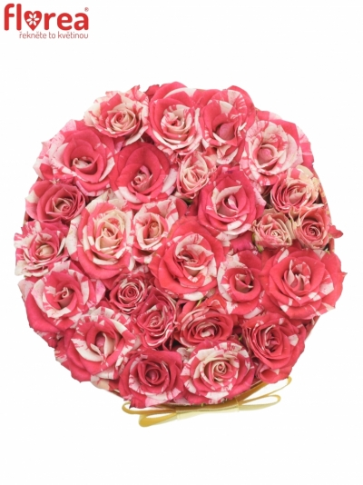 Krabička růží FIREWORKS červená 13,5x8cm