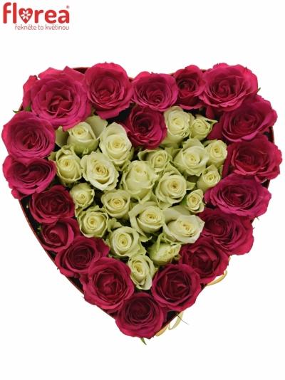 Krabička růží FUCHSITENIA červená 24x10cm
