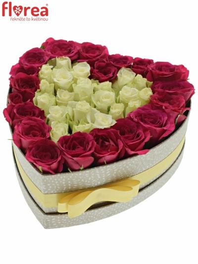 Krabička růží FUCHSITENIA šampaň 24x10cm