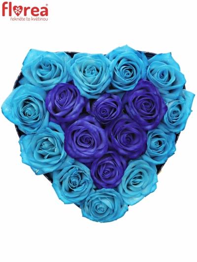 Krabička růží HEARTBLUE modrá 19x9cm
