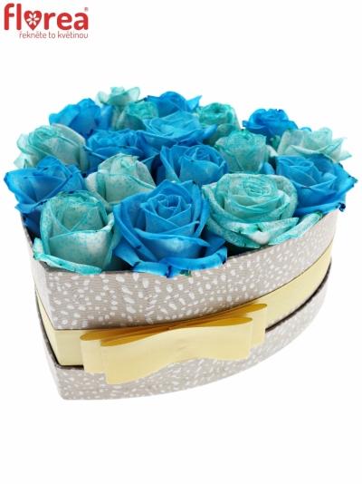 Krabička růží ICEBLUEVELA šampaň 19x9cm