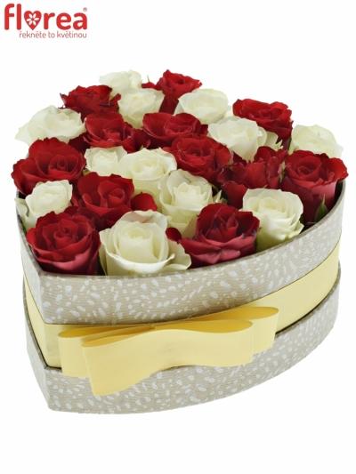Krabička růží JULIA šampaň 15x8cm