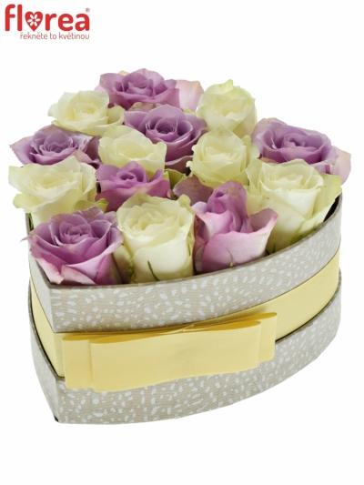 Krabička růží LILA AGATHA šampaň 15x8cm
