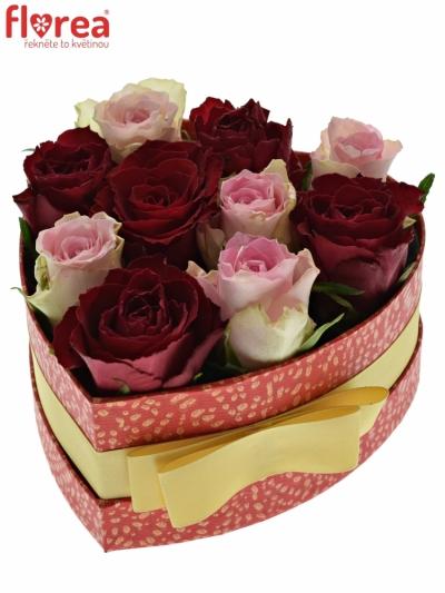 Krabička růží MADAM BISOU červená 15x8cm