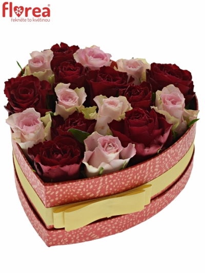 Krabička růží MADAM BISOU červená 19x9cm