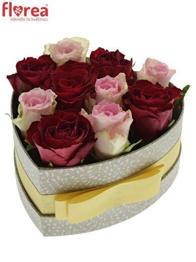 Krabička růží MADAM BISOU šampaň 15x8cm