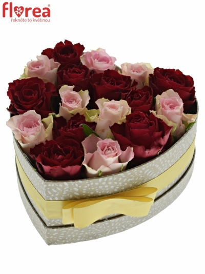 Krabička růží MADAM BISOU šampaň 19x9cm