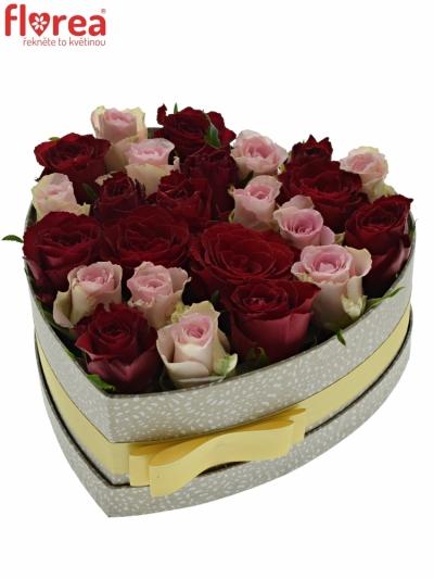 Krabička růží MADAM BISOU šampaň 24x10cm