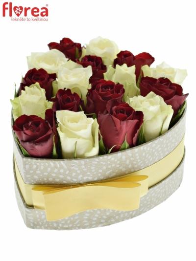 Krabička růží MINI AGATHA šampaň 15x8cm