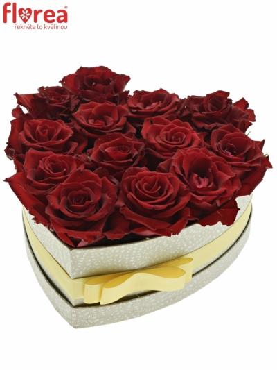 Krabička růží MIRANDA šampaň 24x10cm