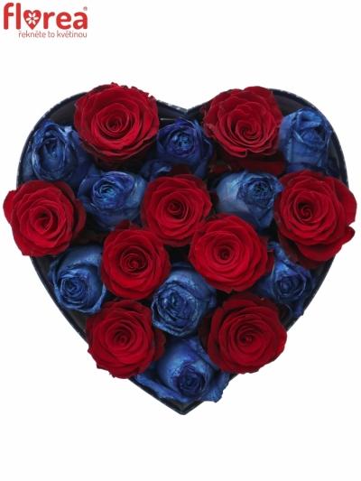 Krabička růží OCYPETE modrá 24x10cm