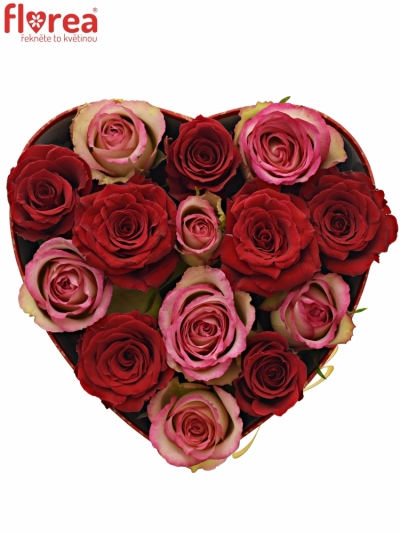 Krabička růží ODETTE červená 19x9cm