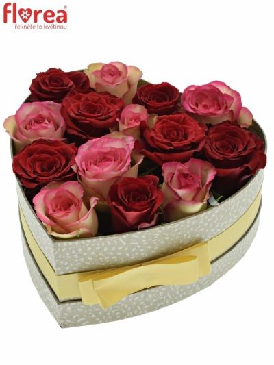 Krabička růží ODETTE šampaň 19x9cm