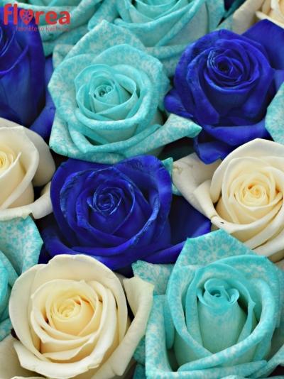 Krabička růží PERSE modrá 19x9cm