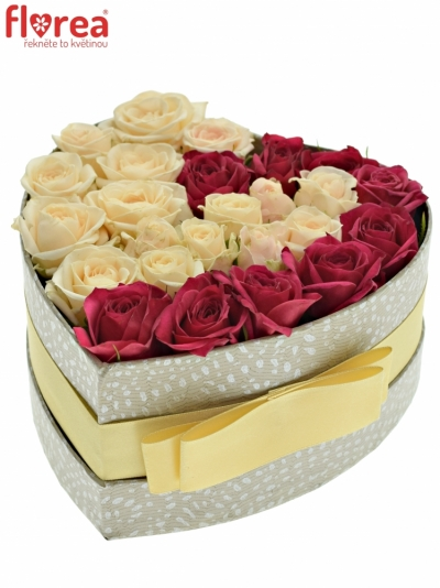 Krabička růží QUINJANE šampaň 15x8cm